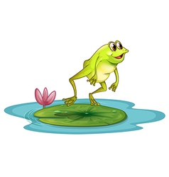 A frog at the pond vector image