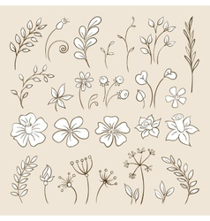 Doodle elements for design flowers buds leaves vector