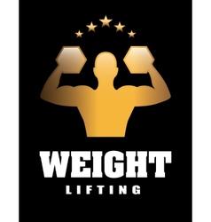 Weight lifting vector