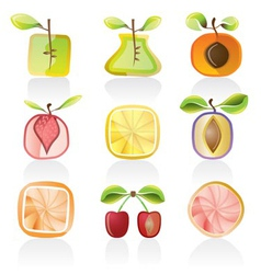 abstract fruit icons vector image vector image