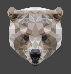low poly bear head vector image vector image