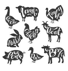 Farm animals vintage stamp collection vector
