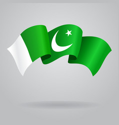 Pakistani waving flag vector