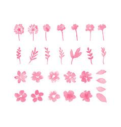 decorative flower watercolor design elements vector image vector image