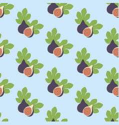fig fruit pattern vector image vector image