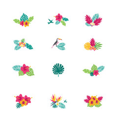 floral paradise hand drawn tropical bouquets vector image