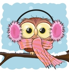 Owl in a fur headphones vector