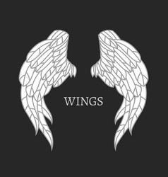 wings image vector image