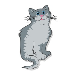 A cute gray tomcat is sitting vector image vector image