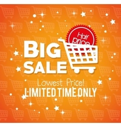 big sale limited time only lowest price buy cart vector image vector image