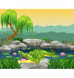 Cute little crocodile posing on the rock vector