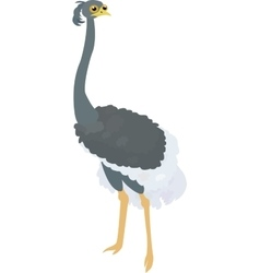 Funny cartoon ostrich isolated on white vector