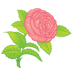 Rose in classic retro style vector