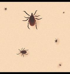 Encephalitis tick mite skin dust parasite icon vector