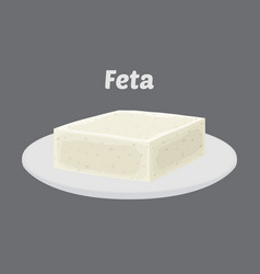feta cheese on plate cartoon flat style vector image vector image