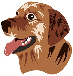 muzzle dog vector image vector image