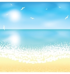 Sand beach at sunset time vector image