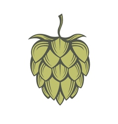 Image of hops vector