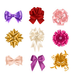 collection of elegant colorful realistic silk bows vector image vector image