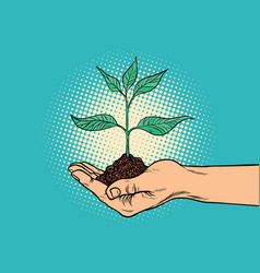 green sprout in hand vector image