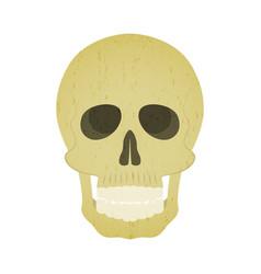 halloween vintage grunge design style skull vector image
