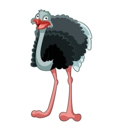 Happy cartoon ostrich vector