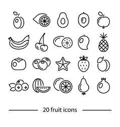 Fruit line icons vector