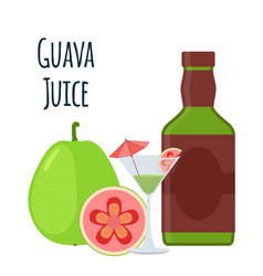 Guava juice fruit alcohol flat style tropical vector