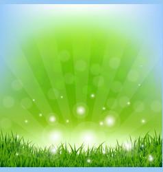 Spring sunburst poster vector