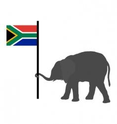elephant baby vector image vector image