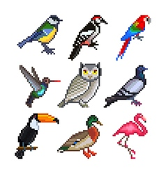 Pixel birds for games icons set vector