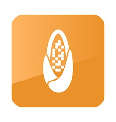 Corncob icon farm vector
