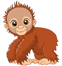 Cartoon baby monkey vector