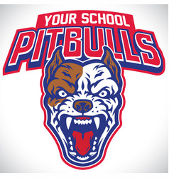 school mascot of pitbull dog vector image
