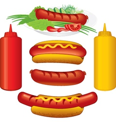 Hot dodg various vector