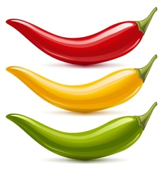 Hot chilli pepper set vector