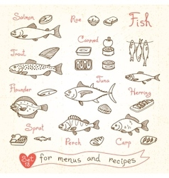 Set drawings of fish for design menus recipes and vector