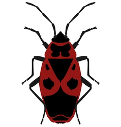 Beetle soldier vector
