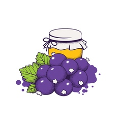 Honey and berries vector