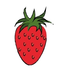 Strawberry healthy fruit nature drawing vector