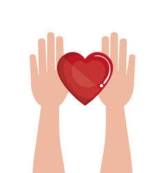 hand human with heart donation blood vector image vector image