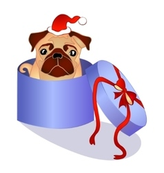 Dog in the box - christmas present vector