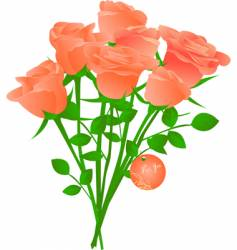 bouquet of orange tea roses vector image vector image