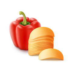 Potato chips stack with paprika on background vector