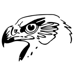 Head of the bird vector