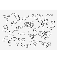 Flourish swirl ornate decoration vector