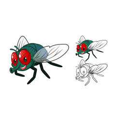 Fly cartoon character vector