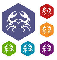 big crab icons set hexagon vector image