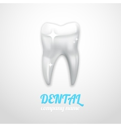dental emblem vector image vector image