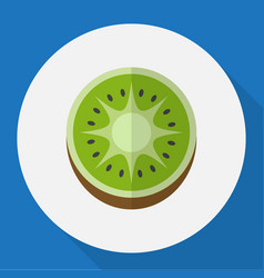 of fruits symbol on kiwi flat vector image